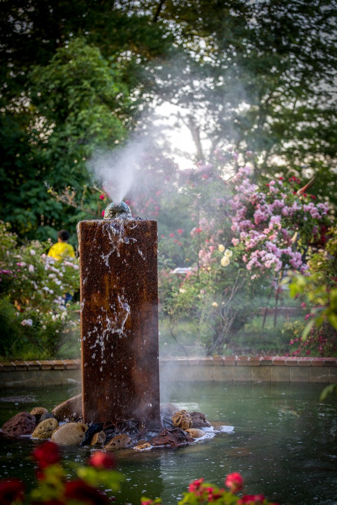 Misty Grounds.  Ornamental Metal Museum, May 7, 2015.